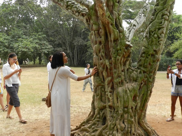 Students seeing the carved trees at Aburi Gardens, Ntonso, Ashanti Region, Ghana.