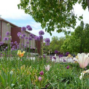 Clark Building on CSU campus