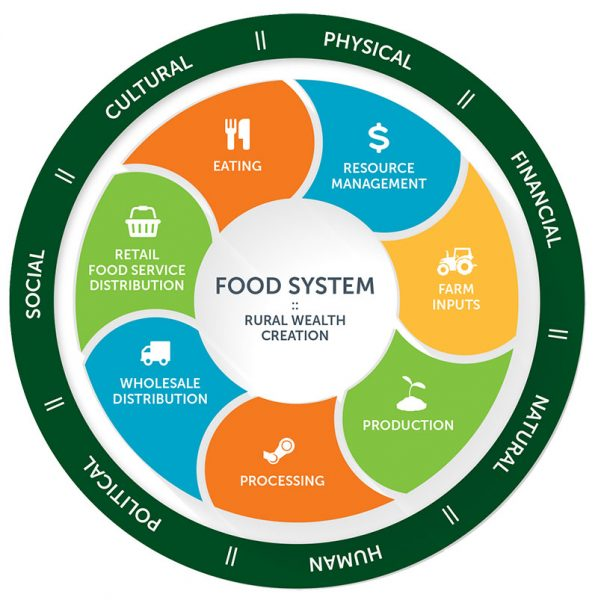 Diagram of the food system process and the impacts it has on society