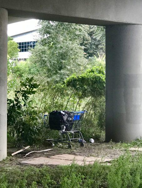 Abadoned shopping cart along the Platte River