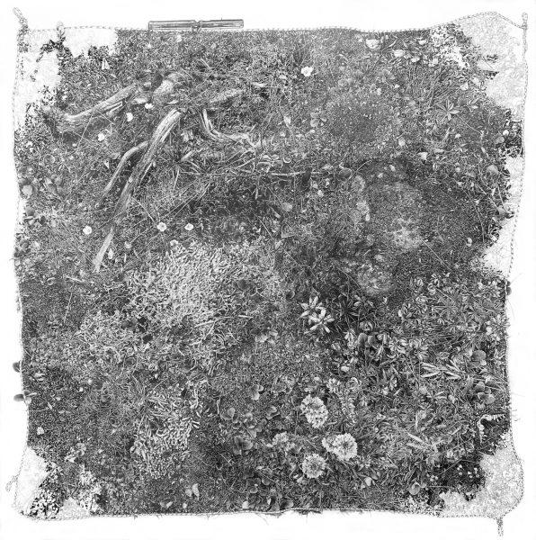 Plot-gama-earthweel